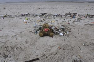 Teddy bear washed up on beach